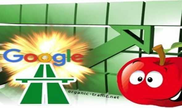 google traffic