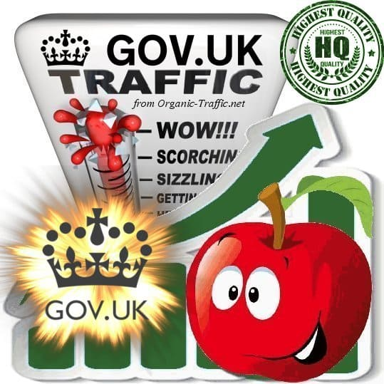 Buy Gov.uk Web Traffic