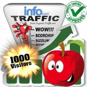 buy 1000 info com search traffic visitors