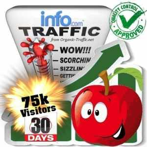 buy 75k info.com search traffic visitors in 30days