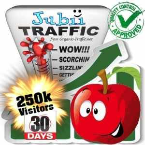 jubii.dk search traffic visitors 30days 250k