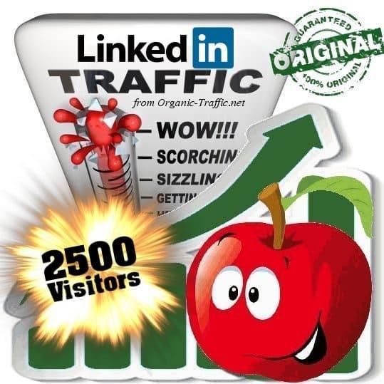 buy 2500 linkedin social traffic visitors