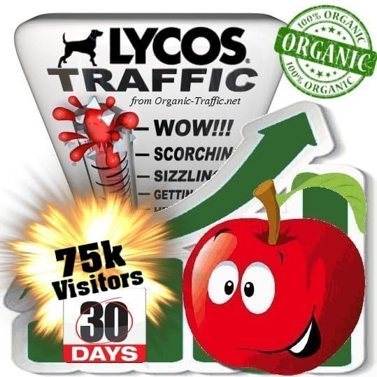 lycos organic traffic visitors 30days 75k