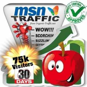 buy 75k msn search traffic visitors within 30 days