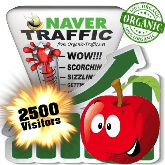 2500 naver organic traffic visitors