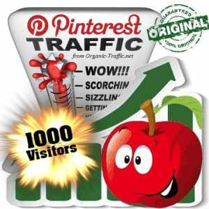 buy 1000 pinterest social traffic visitors