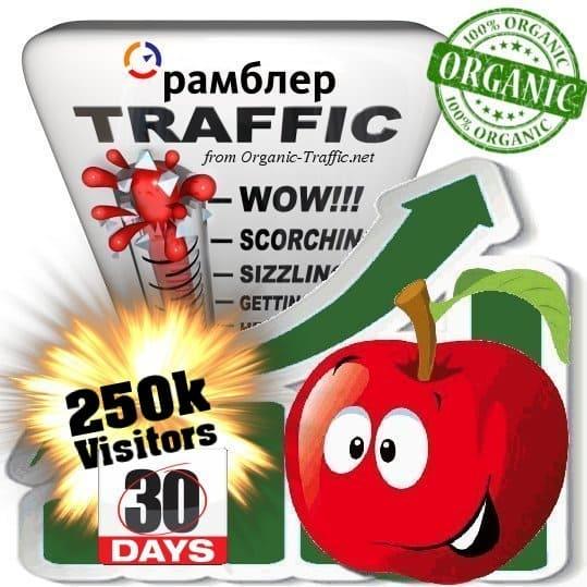 buy 250k rambler organic traffic visitors for 30days