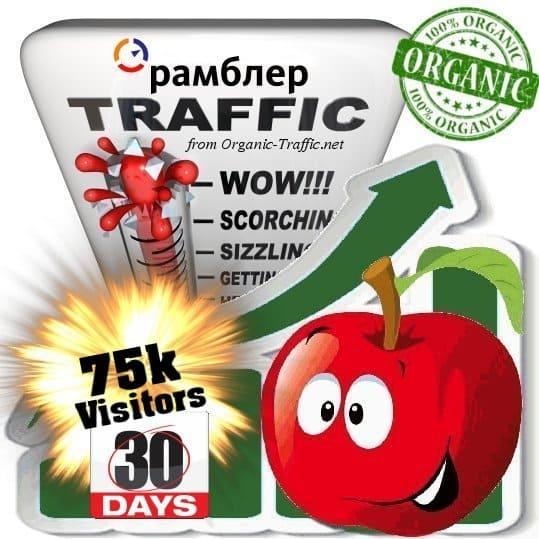 rambler organic traffic visitors 30days 75k