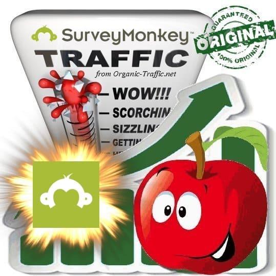 Buy SurveyMonkey.com Web Traffic Service