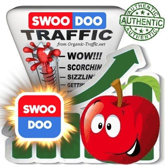 Buy Website Traffic Swoodoo.com
