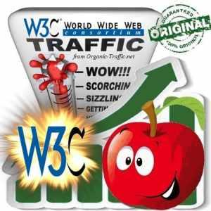 Buy W3C Website Traffic