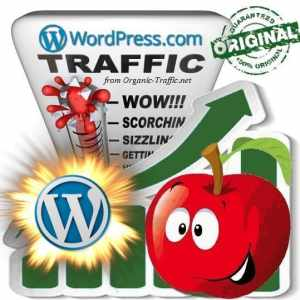 Buy WordPress Web Traffic
