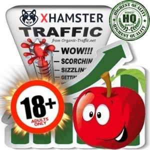 Buy xhamster.com Adult Traffic