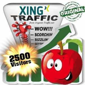 buy 2500 xing social traffic visitors