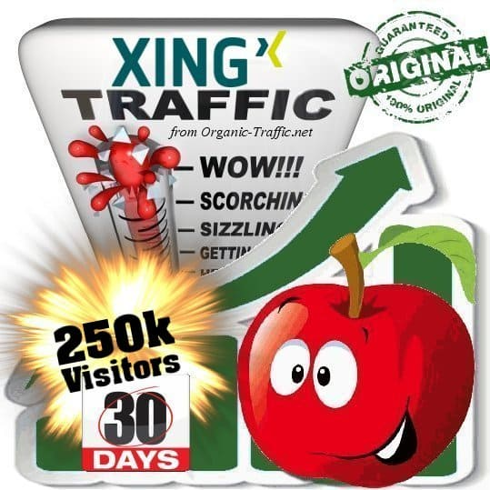 buy 250k xing social traffic visitors in 30 days