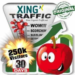 buy 250k xing social traffic visitors in 30 days