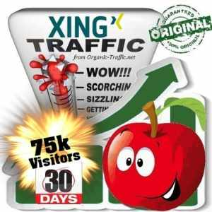 buy 75k xing social traffic visitors in 30 days
