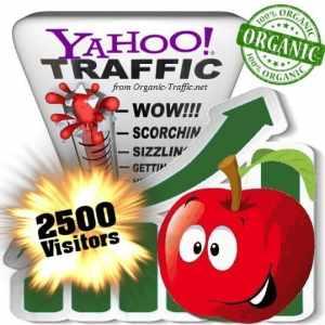 2500 yahoo organic traffic visitors