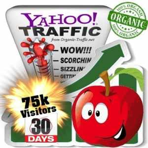 yahoo organic traffic visitors 30days 75k