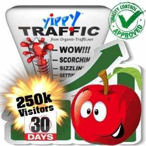 buy 250.000 yippy search traffic visitors in 30 days