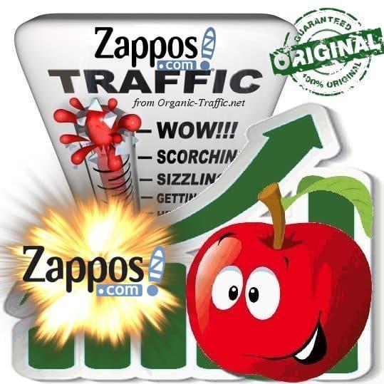 Buy Zappos.com Web Traffic Service