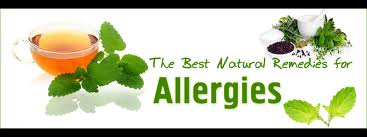 natural and herbal allergy remedies