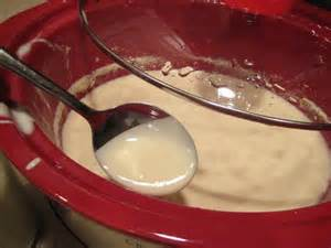 raw homemade yogurt in crockpot