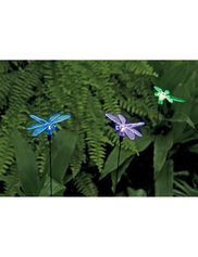 dragonfly solar lighting