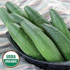 organic-cucumbers