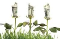 Organical Botanicals Affiliate Program