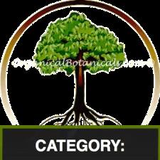 Tree/Shrub