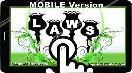 CLICK for Google AMP for Mobile Version