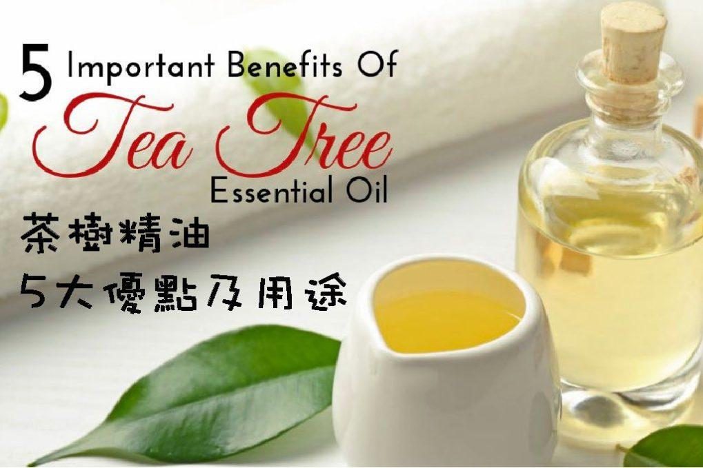茶樹精油功效