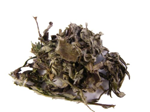 Hang Low Organic Chinese Herbs - Ai Ye