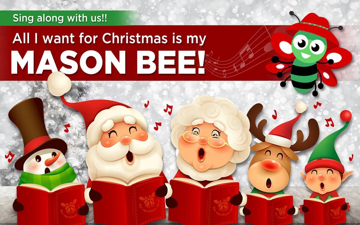MASON BEES FOR CHRISTMAS