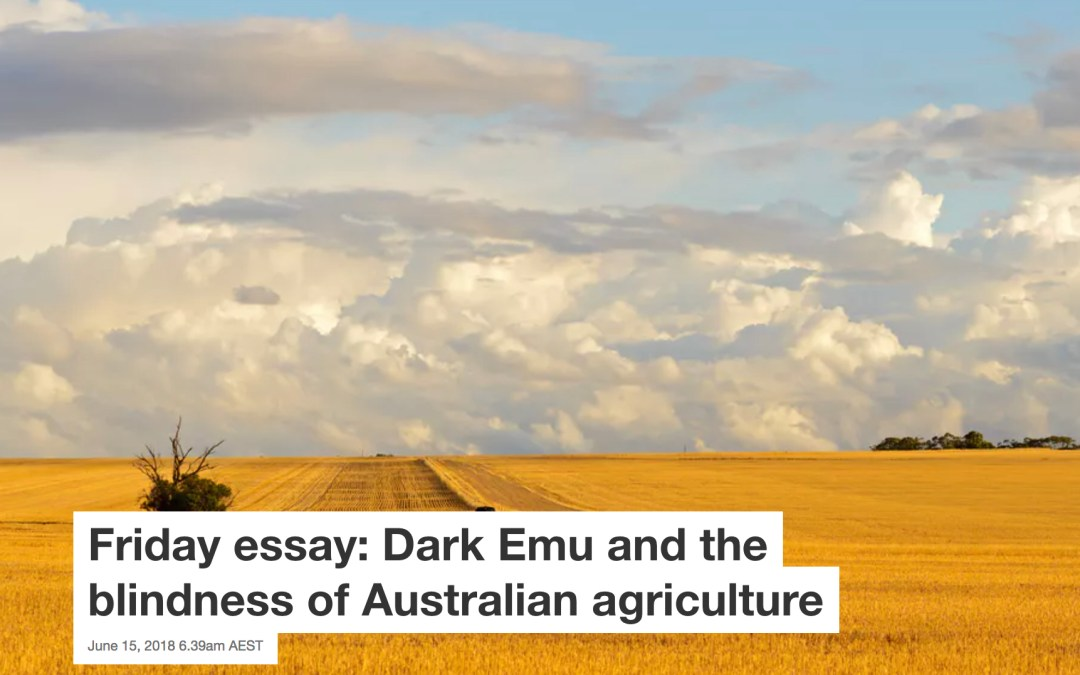 Friday Essay Dark Emu And The Blindness Of Australian Agriculture  Friday Essay Dark Emu And The Blindness Of Australian Agriculture Outdoor Furniture Plans also Rustic Furniture Plans Shaker Style Furniture Plans