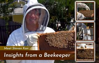 photo of beekeeper with three square images of beekeeper tending to bees