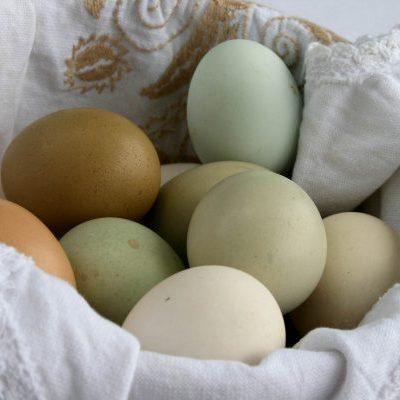 Huevos de campo. 10 u.