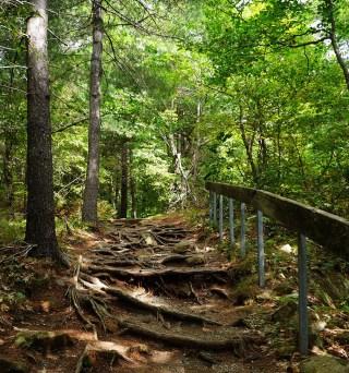 Bon Echo Provincial Park - Cliff Top Trail