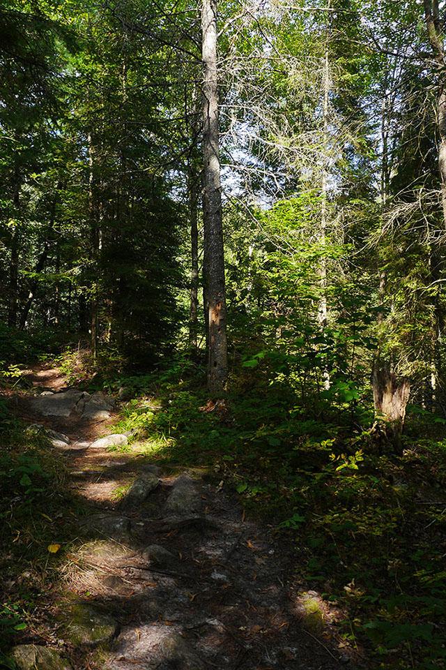 Bon Echo Provincial Park - Clutes