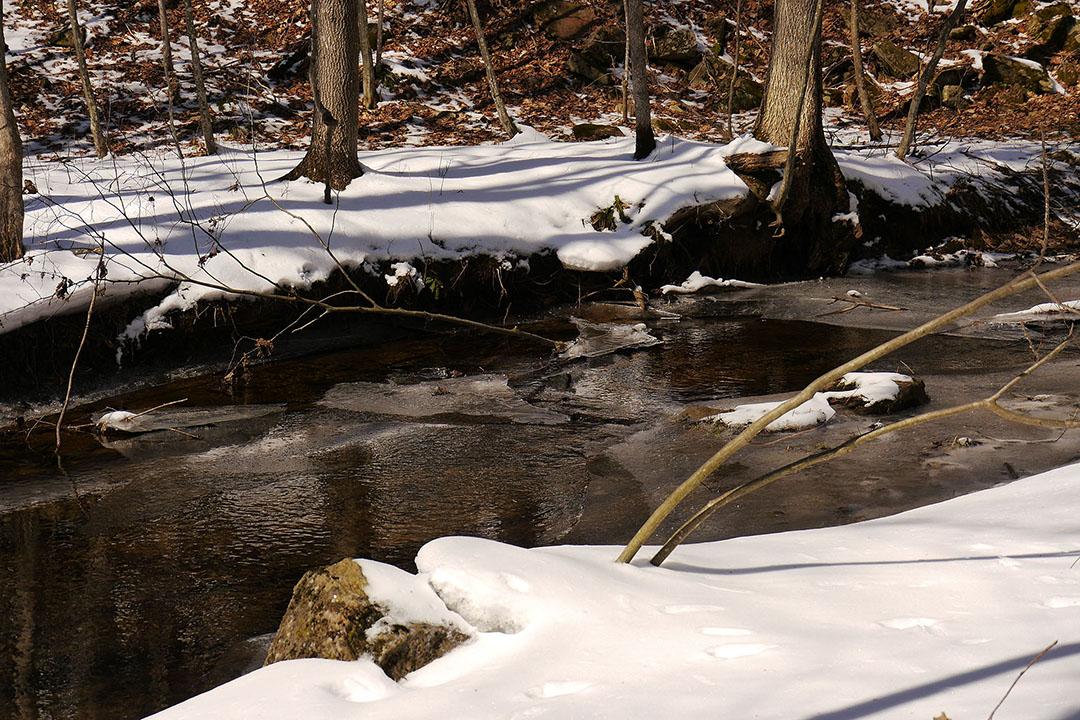 Frontenac Provincial Park - Spring Melt