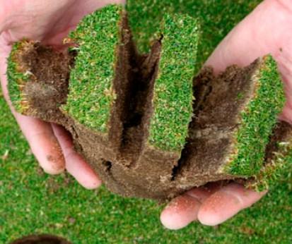 verticut-muy-agresivo-en-un-green-de-golf
