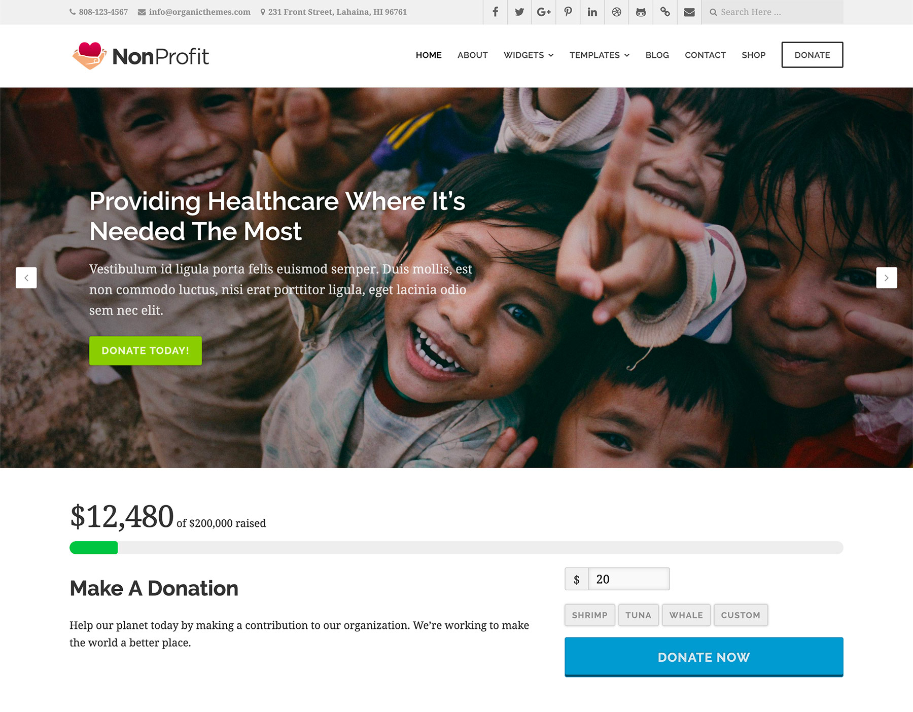 The document serves as a report card, acknowledgement to donors and other supporters, a chance to share infor. Non Profit Website Template Archives Beautiful Responsive WordPress Themes Organic Themes