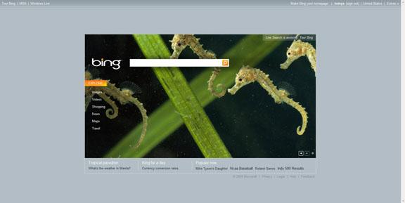 Microsoft Bing Home Page