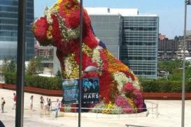 Cata Cervezas enfrente al museo Guggenheim en Bilbao
