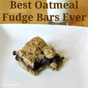 Best Oatmeal Fudge Bars Ever - Organized 31