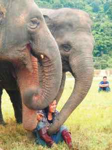 Lek, the founder of the Elephant Nature Park in Chiang Mai Thailand