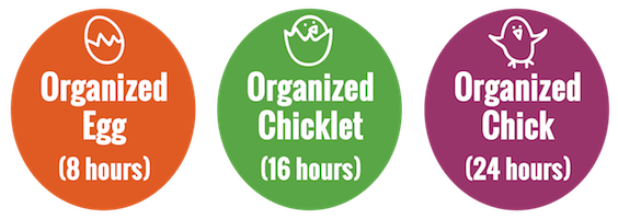 Organized Chick Professional Organizing Packages