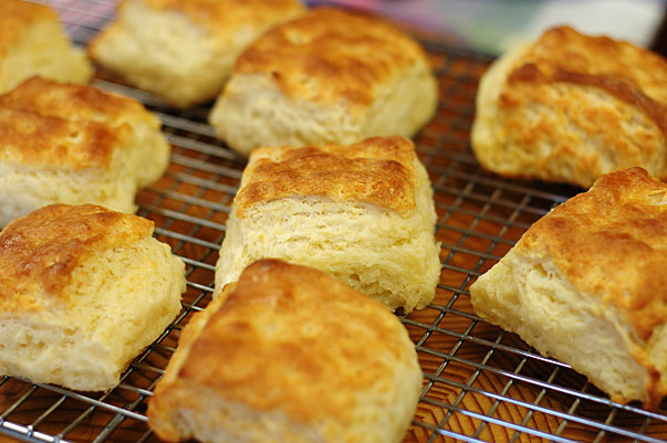 flakey biscuits hot from the oven
