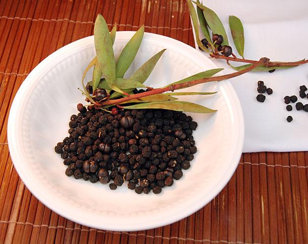native Australian pepperberries